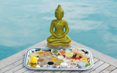 Ayurveda – Die Mutter der Medizin